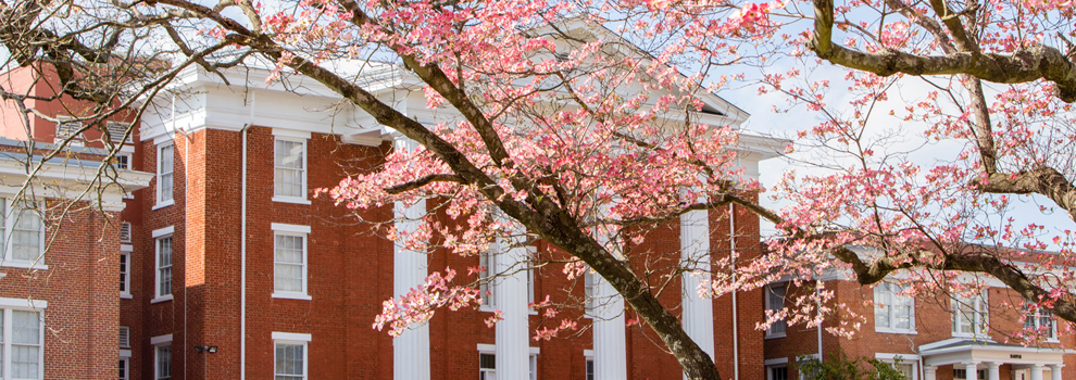 Louisburg College Ranks #1 in NC, 13th in the Nation for Job Placement